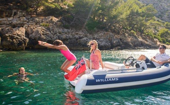 Williams Sportjet 345